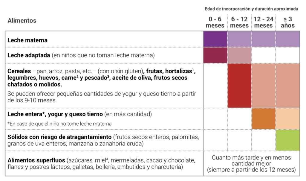 Pautas orientativas en la introducción de alimentos en bebés