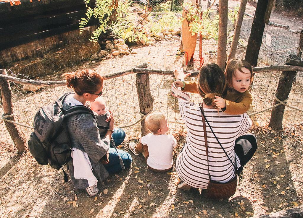 Familias visitando el Granja Aventura Park
